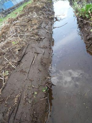 プレ補強後の水路