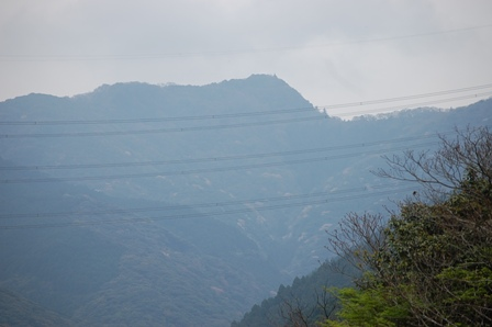2012.4.19花 006