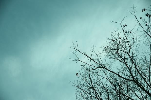 さむざむしくて悲しい風景が撮りた~い♪
