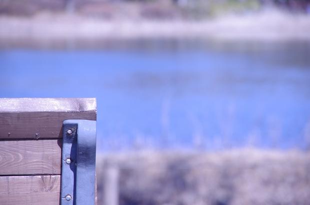 ボートのこげる湖があります。
