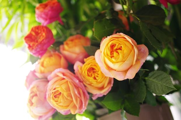 大好きなお花屋さんで、パチリ!