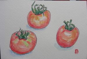 CIMG5871ミニトマト
