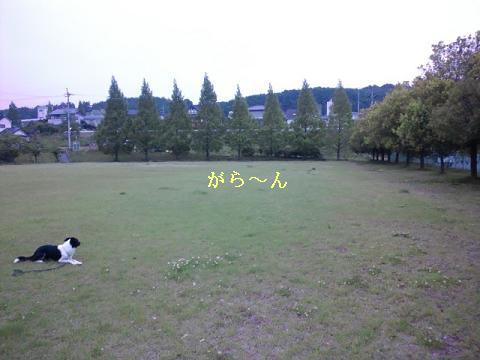 2011053102.jpg