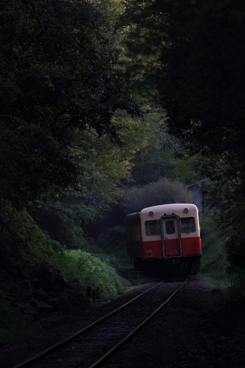 2011050103.jpg