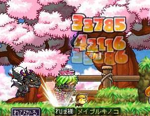 Maple090828_172837.jpg