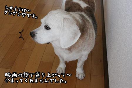 1_20090902222454.jpg