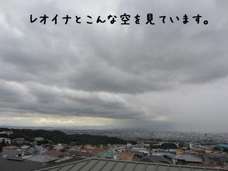 1_20110805153243.jpg