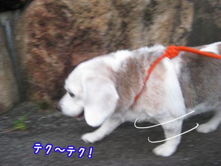 2_20090831201943.jpg