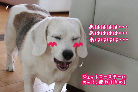 2_20090913121839.jpg