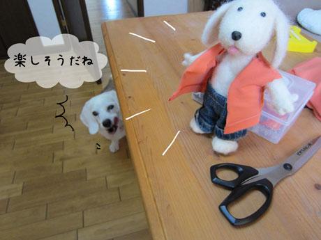 2_20110807145951.jpg
