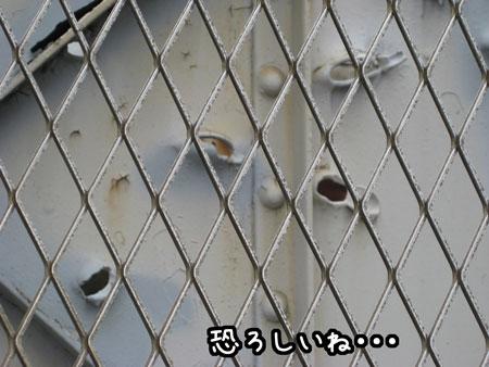 3_20090828144632.jpg