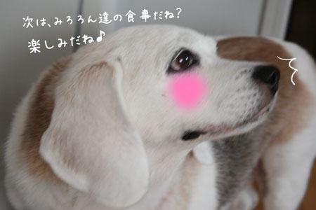 3_20090829180644.jpg