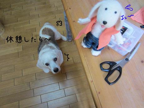 4_20110807145950.jpg