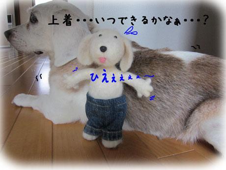 6_20110802171202.jpg