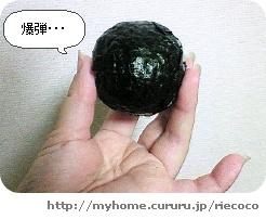 image2536061.jpg
