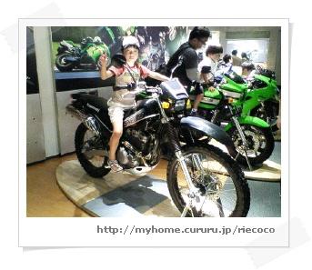image3232892.jpg