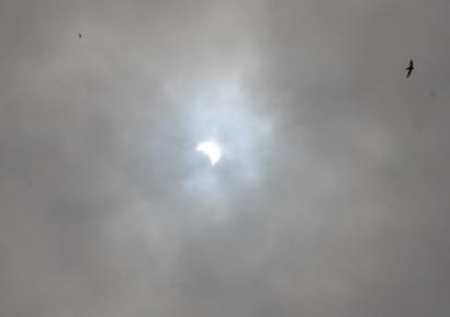 静岡市の部分日食-2