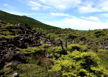 ピラタス横岳-3