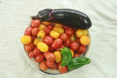 tomatonasu.jpg