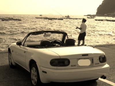 Roadster_convert_20090903004620.jpg