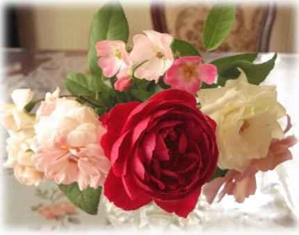 お庭のお花で
