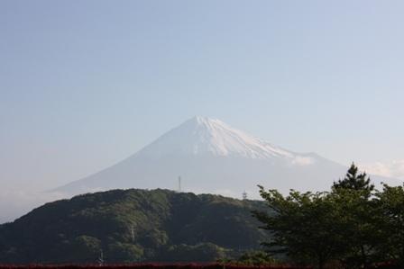 Fuji goko 2011 (8)