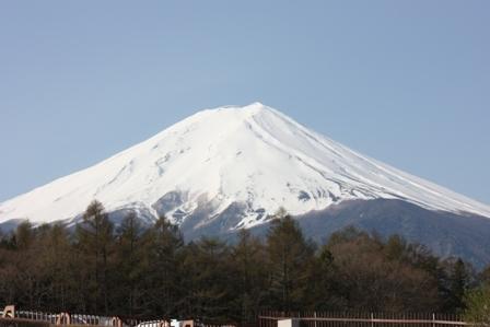 Fuji goko 2011 (111)