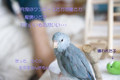 DSC_0813-5.jpg