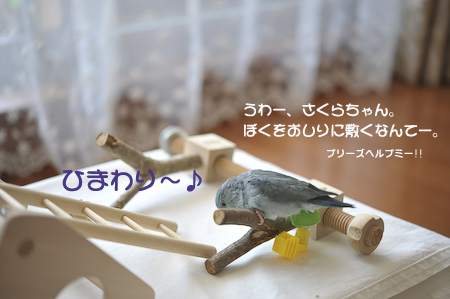 DSC_3898-2.jpg