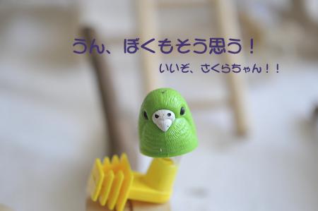 DSC_3926-4.jpg
