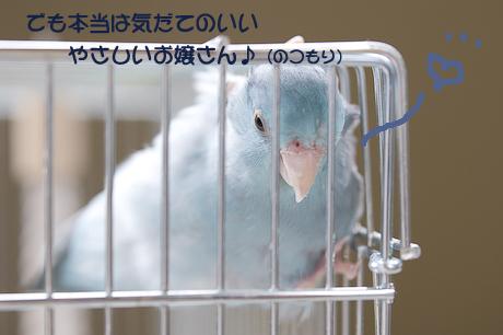 DSC_5139-6.jpg