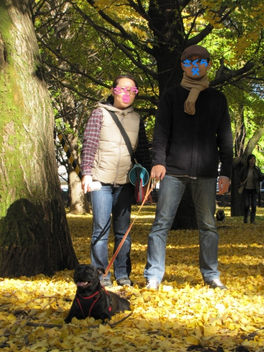 芦花公園11