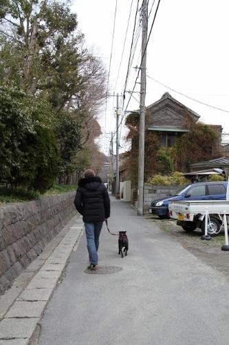 鎌倉散策1