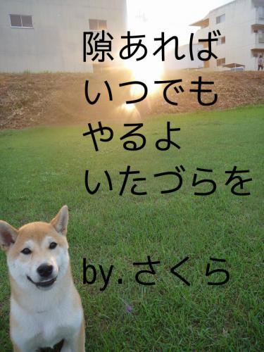 いたづら5
