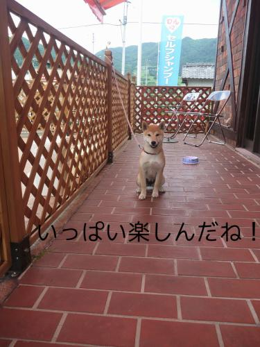 BUROGU.jpg