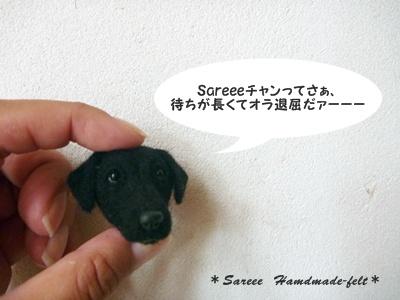 ○P1150842