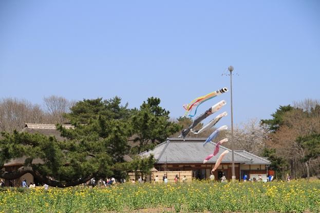 23 4月17日海浜公園 137