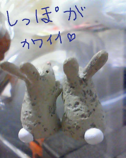 201107032151000.jpg