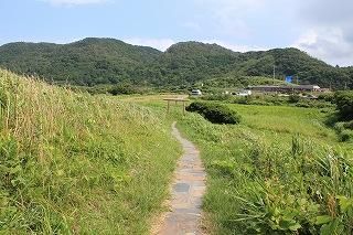 IMG_5378.jpg