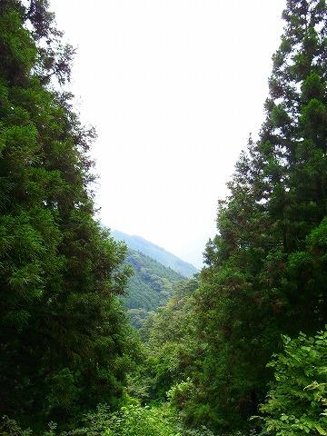 2011-08-16 名栗湖 051