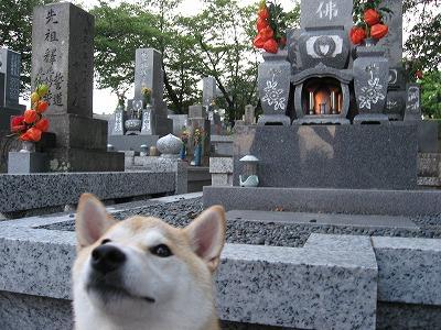 お墓の前で