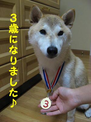 3歳メダル♪