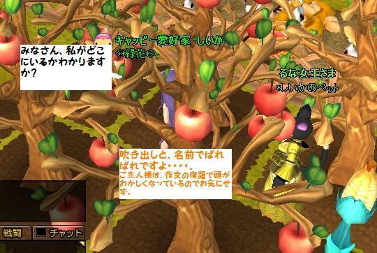 りんごがいっぱい!!!