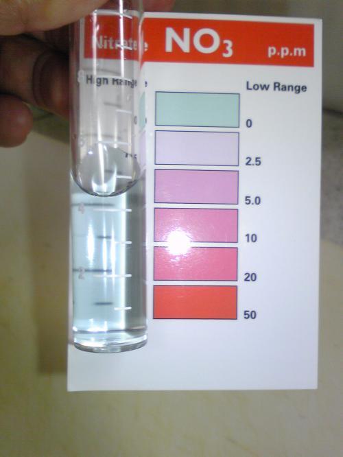 硝酸塩水換え後