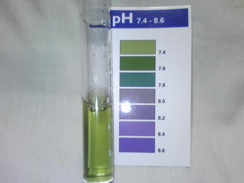 水道水のpH