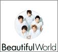 Beautiful-World11.jpg