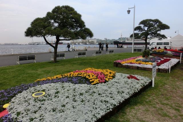 花壇展風景