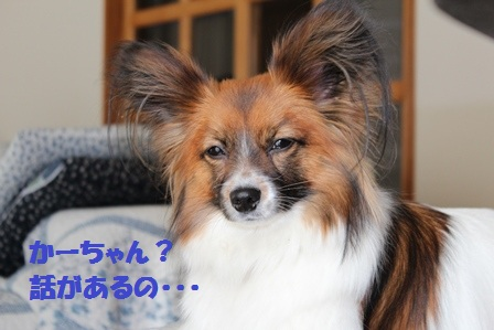 IMG_3814.jpg