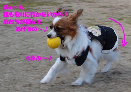 IMG_4297_20120405181949.jpg