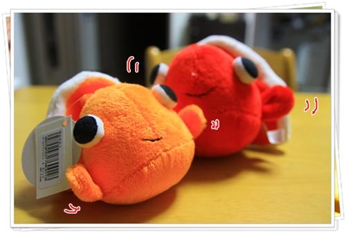 090820金魚ちゃん